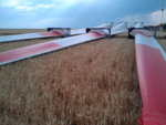 juwi: Windpark Kerzenheim bekommt High-Tech-Flügel