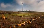 Österreich: Unsichere Zukunft für Windkraft