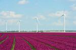 Senvion schließt Rahmenvertrag über 100 MW mit PROKON