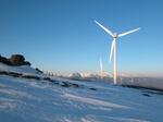 IG WIndkraft: Ausschreibungen für Österreich ungeeignet