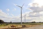 Mainstream Renewable Power wins 7 government contracts in Chile to build 1GW of wind energy plants worth USD $1.65bn