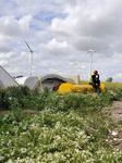 bewegter Wind - Internationale Windkunst in Hessen