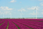Senvion crosses 2 gigawatts cumulative installations in France