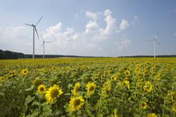 © Marc-Oliver Schulz / Greenpeace Energy eG