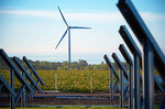 St. Olaf celebrates carbon-free electrical power