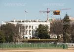 Greenpeace protestiert gegen Donald Trump