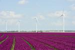 Senvion gibt Rahmenvertrag über bis zu 216 MW in Portugal bekannt