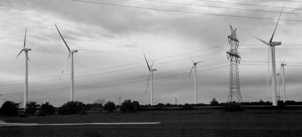 Für Vögel ist es nicht leicht, zwischen Strommasten und Windkraftanlagen den Überblick zu behalten (Foto: Katrin Radtke)