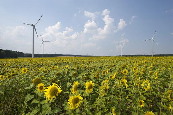 Windpark Buchhain (Bild: Greenpeace Energy)
