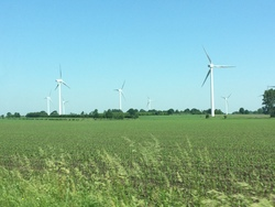 Wind farm in Lower Saxony (Image: Katrin Radtke)