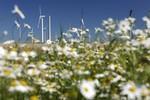 Windenergie stellt sich Regelenergiemarkt