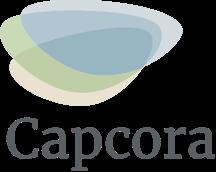 Bild: Capcora arbeitet mit Ostwind zusammen