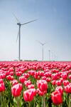 Vattenfall expands in Dutch wind farm