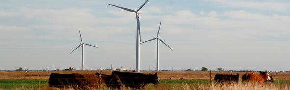 Image: NextEra Energy