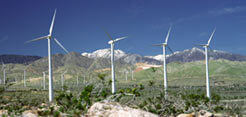 Image: Avengrid Renewables