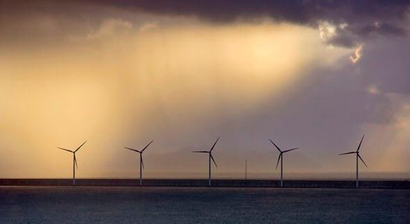Image: Carbon Trust