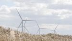 Siemens Gamesa consigue un nuevo pedido de 74,8 MW en Japón