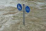Vom Vorreiter zum Blockierer: Deutschland bremst Klimaschutz auf EU-Ebene aus