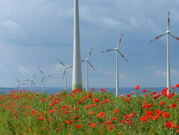 Bild: Windpark Druiberg / BWE