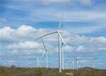 Iberdrola construirá en Brasil su parque eólico más grande de Latinoamérica