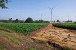 Windwärts beginnt Bauarbeiten im Windpark Düste II