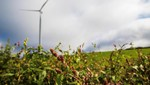 Statkraft starts construction of Kilathmoy wind farm in Ireland