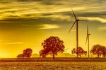Alberta Government Pushes for Wind Energy with Low Prices
