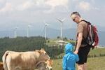 Windkraftnutzung und Wald passen gut zusammen