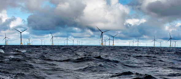 Wikinger offshore wind farm in the Baltic Sea (Image: Iberdrola)