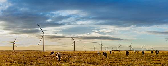 Mt. Gellibrand Wind Farm, in Victoria, owned by ACCIONA.  (Image: ACCIONA)