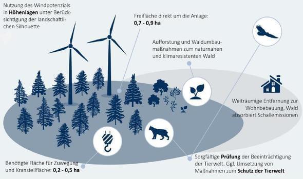 Windnutzung auf forstwirtschaftlichen Flächen z.B. Kiefernforsten und Kahlschlägen (Grafik: BWE)