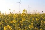 EWE bündelt Erneuerbare Energien in einer Gesellschaft