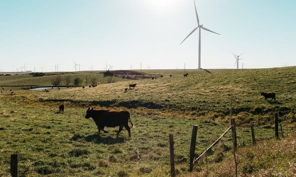 All Images: AWEA