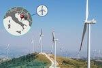 RWE nimmt Windpark in Italien in Betrieb