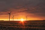 Allianz für Erneuerbare Energien: aream und Capital Nature unterzeichnen Kooperationsabkommen