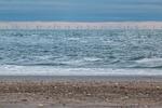 BSH: Weiterer Ausbau der Offshore-Windenergie