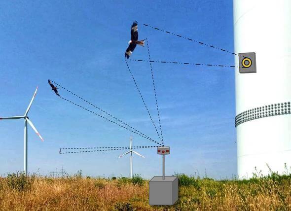 Schema Kamera- und Radarsysteme an WEA zur Erfassung von Vögeln (Bild: BfN/Ponitka)