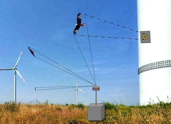 Diagram of camera and radar systems on wind turbines for recording birds (Image: BfN/Ponitka)