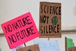 Die Wahl in den USA - eine Hoffnung für den Klimaschutz?