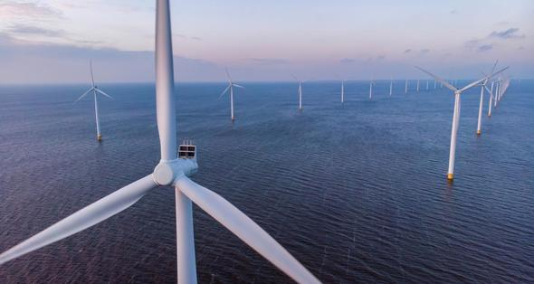 Image: The Carbon Trust