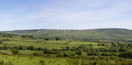 Northern Ireland Approves Wind Farm for Green Economic Recovery