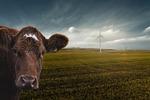 """Olaf Lies zur LEE-Studie zum Flächenpotenzial Windkraft in Niedersachsen: """"Brauchen ambitionierten Ausbau der Windenergie an Land."""""""