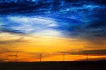 """Brandenburg ist Partnerland der """"Husum Wind 2021"""""""