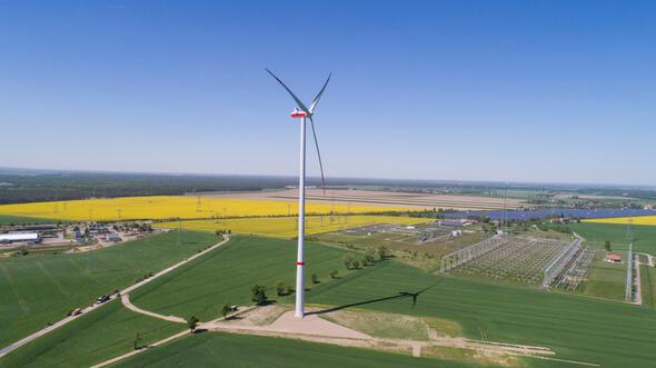 Blick auf den Windpark Streumen (Bild: Lutz Weidler (LKW))