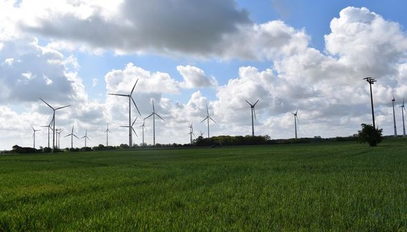 Visualisierung des Windparks in Düsedau, vier davon EnBW. (Bild: EnBW / Visualierung: Ulrike Ahrens)