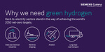 Mobilizing a revolution to tackle climate change: the ambitious plan for a competitive green-hydrogen industry by 2030