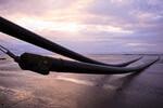 TenneT startet mit Kabelverlegung im Flachwasser- und Offshore-Bereich für die Netzanbindung DolWin6