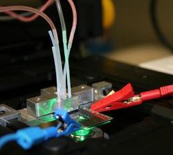 Prototyp einer membranlosen mikrofluidischen Brennstoffzelle bei der elektrochemischen und strömungsmechanischen Charakterisierung auf dem Mikroskop (Bild: TU Ilmenau/Wiebke Rösing)