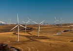 New Study Helps Wind Industry, Wildlife Managers Identify Risks to Certain Raptors from Collisions with Wind Turbines