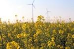 Baden-Württemberg liegt beim Windkraftausbau bundesweit auf Platz fünf